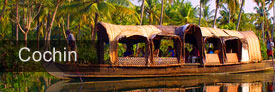 Cochin et les backwaters